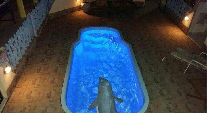 Zwembad ik 's nachts