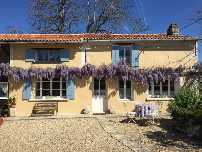 The gite at the beginning of April when the wisteria is in full flower