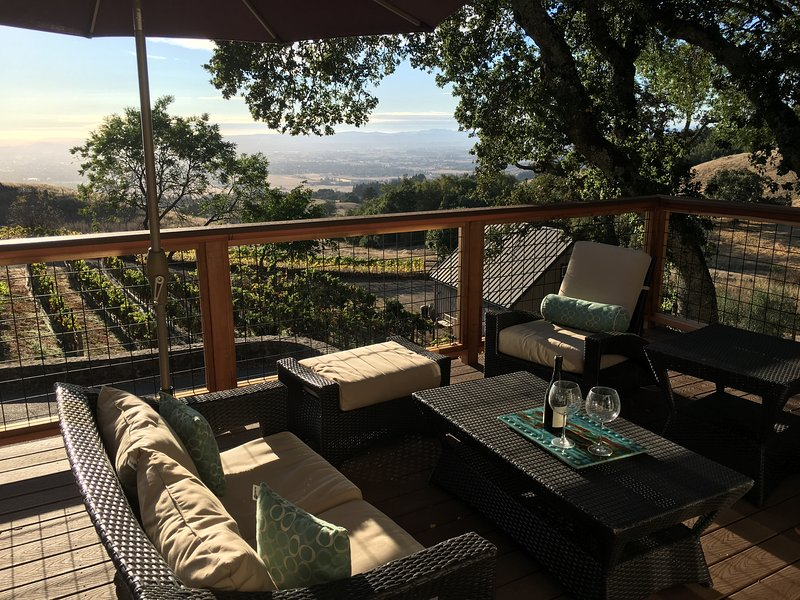 Hillside Vineyard Estate on 6 Gated Acres Beautiful Retreat with Amazing Views, holiday rental in Penngrove