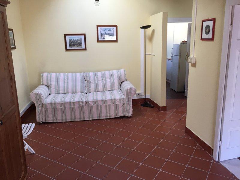 salon avec TV et canapé-lit