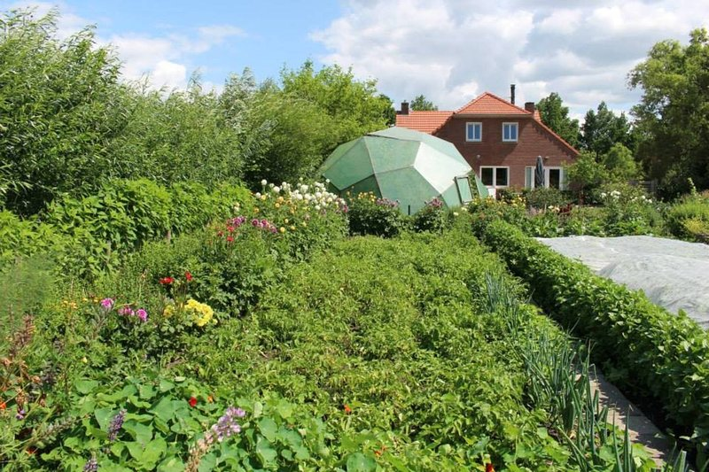 Voedselbos permaculture