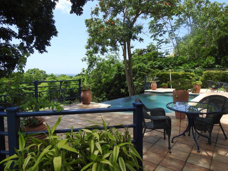 Den infinity-pool flankeras av kaklade terrasser
