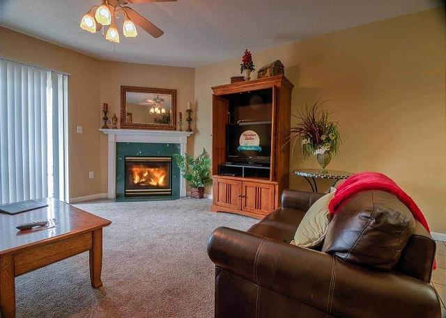 Living Room  with seasonal fireplace.