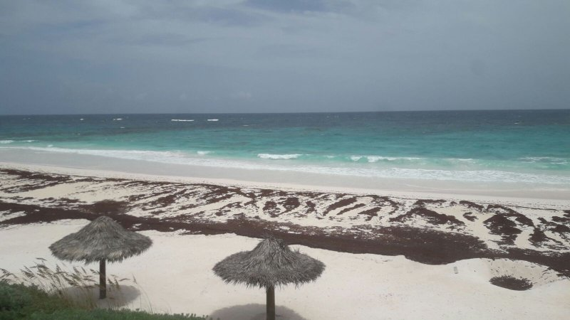 beach is 2 mins away from The Palm. Beach is normally empty just for you