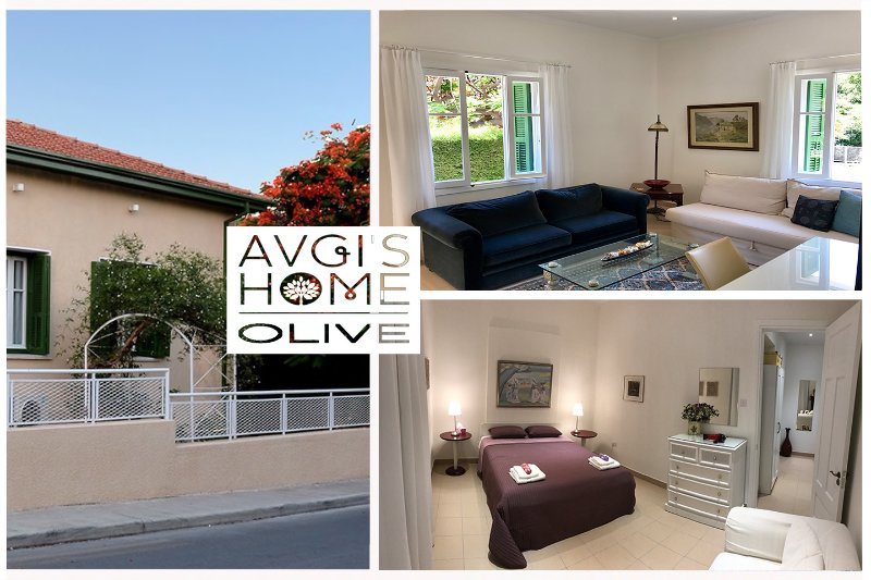 'Olive Garden Apt. at 'Avgi's Home''vacation/Business ready amazing, large and cozy Apartment