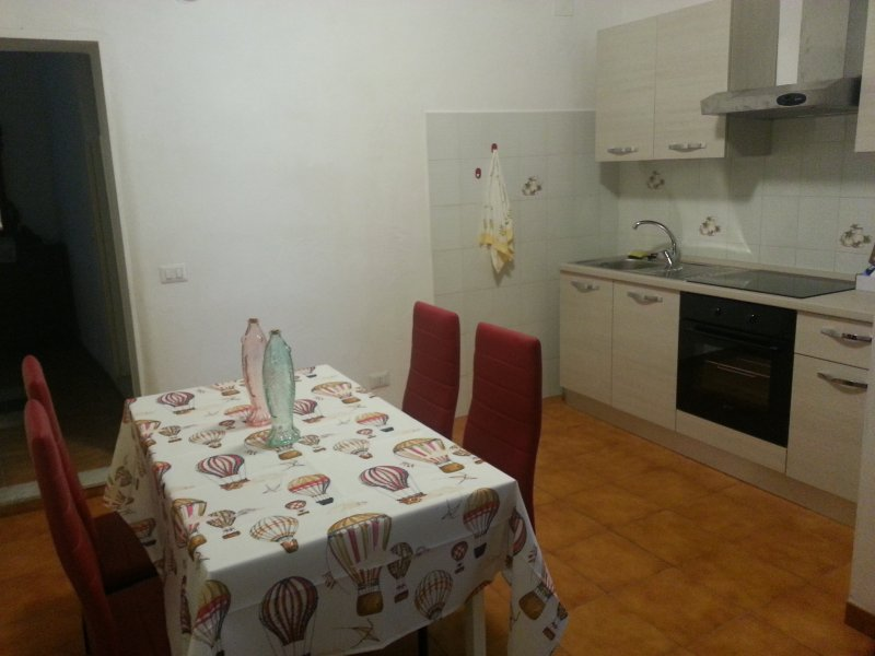 Kitchen and dining area with induction plate