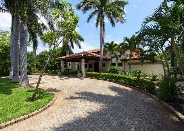 Towering royal palms line the entrance to Casa de Campo