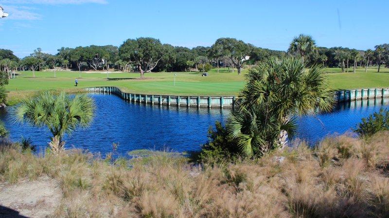 ¡Mire a los golfistas en el green o la vida silvestre en la laguna!