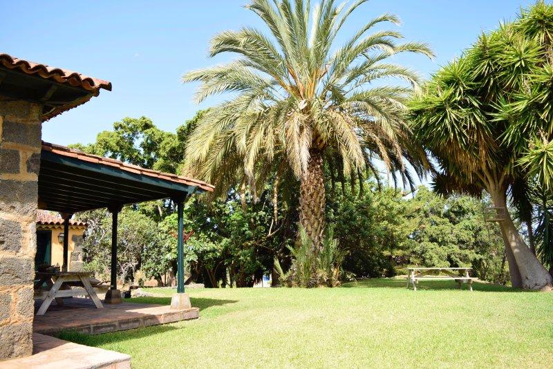 Tropical Garden, vacation rental in La Orotava