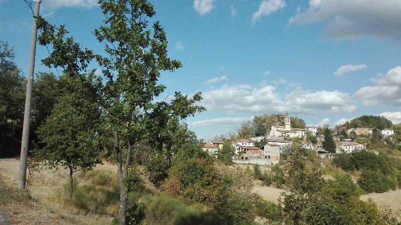 Montemarzino