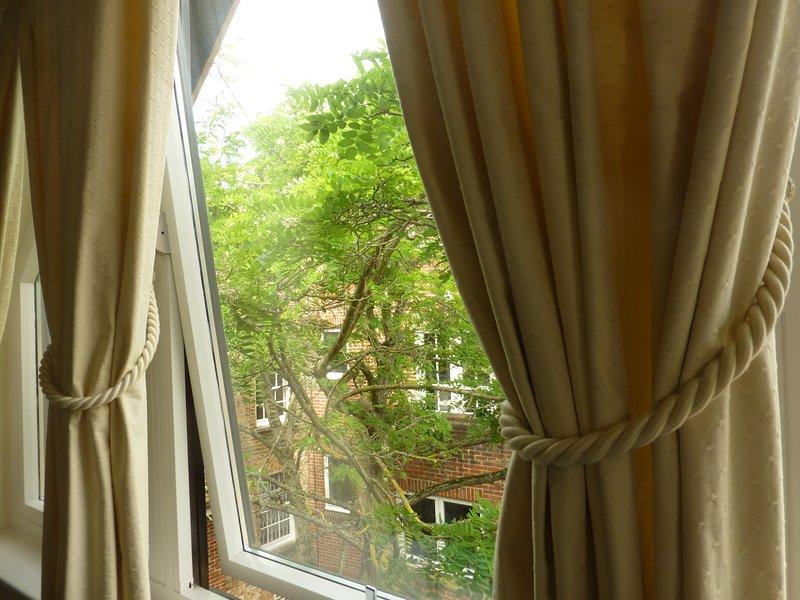 Vista sul cortile con la parte superiore dell'albero e linea del tetto visibile.