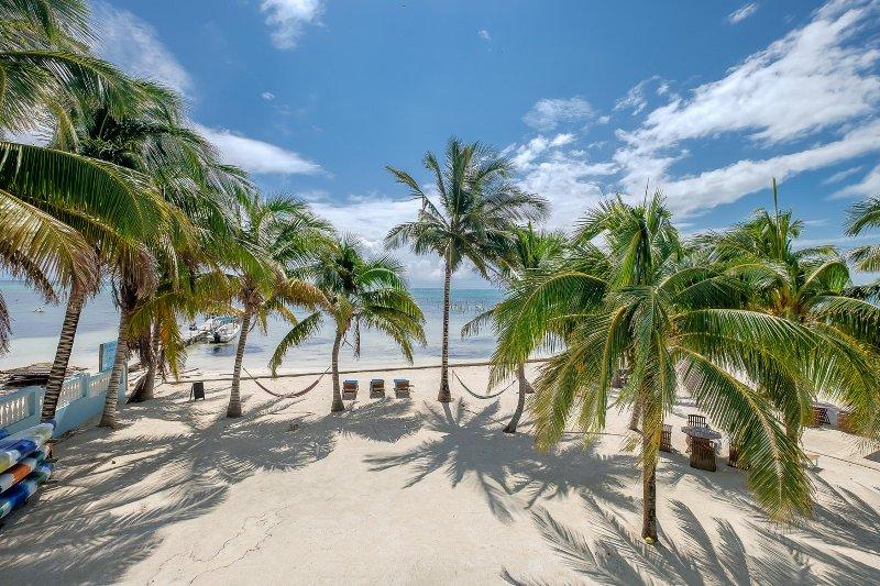 Beautiful beach and waving palms.