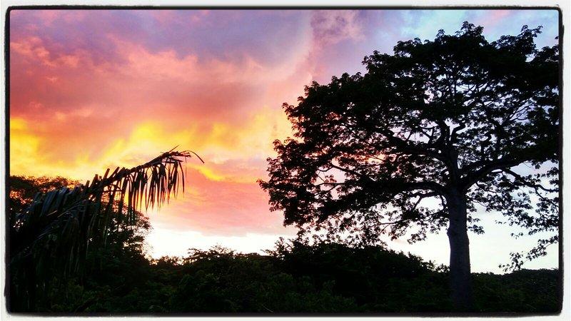 Ceiba View From Casa Ceiba Samara