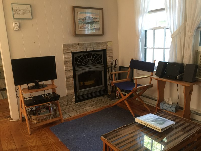 Fireplaced Livingroom with Cable TV, Audio system, DVD player, and wireless internet