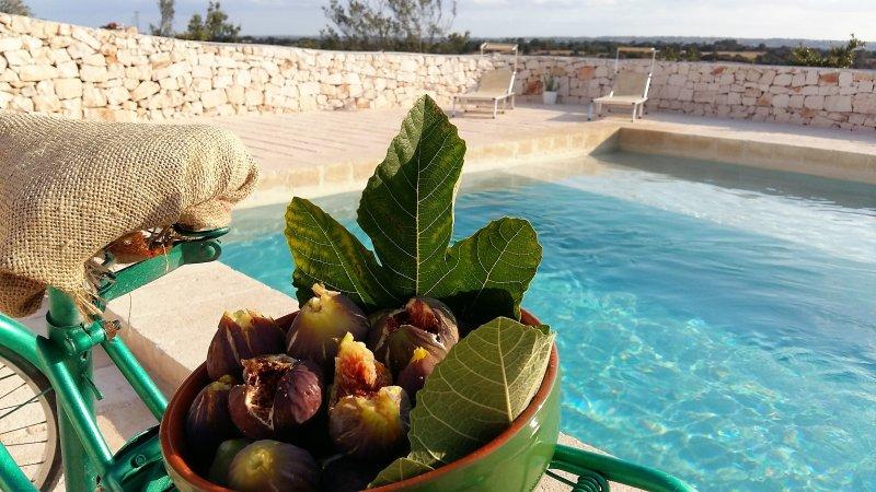 time of figs Poetry Masseria Cisternino Puglia Italy
