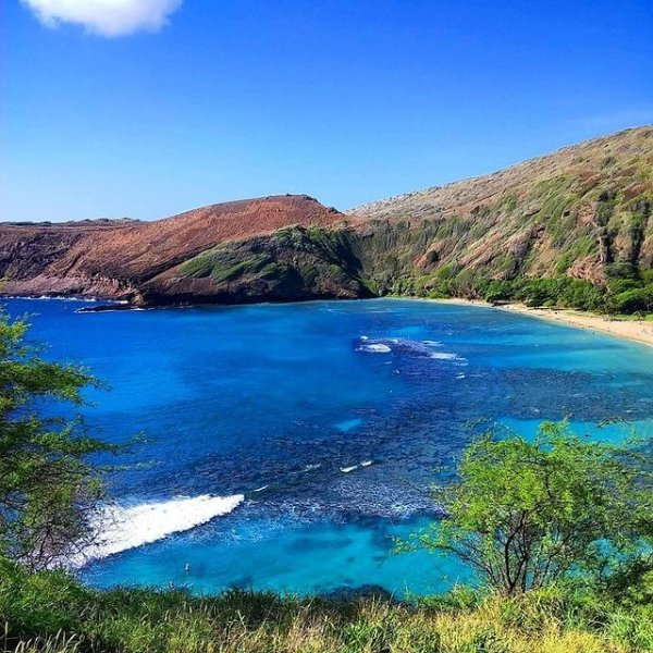 Hawaii Landscape.