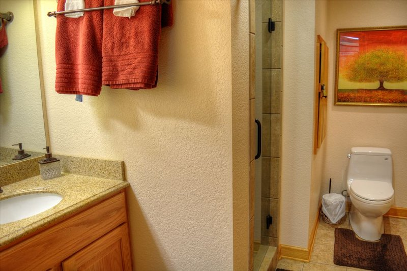 Lower level full bathroom with walk in shower