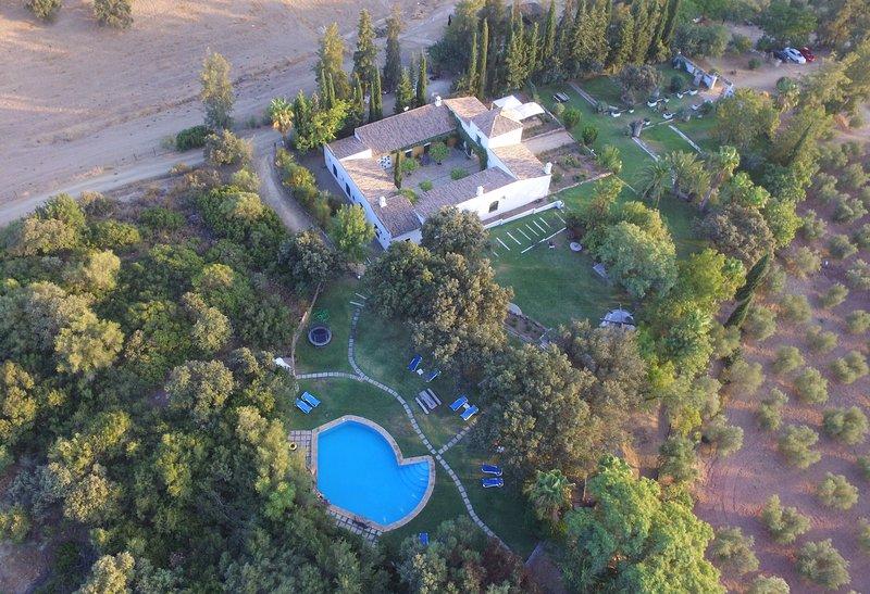 Finca Maravilla Verde, artistic landhouse near Sevilla and Ronda, 14-22p, aluguéis de temporada em Moron de la Frontera