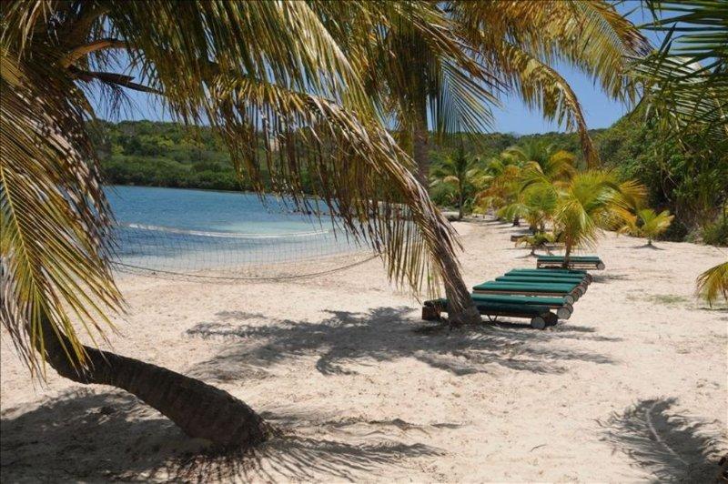 Nonsuch Bay Resort  beach