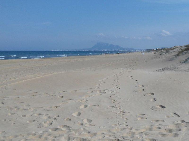 THE BEST BEACH ON THE WORLD