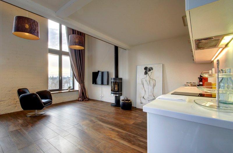 Loft 65 panoramic view, vacation rental in Vilnius