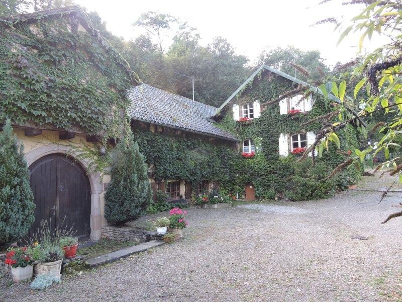 Domaine de l'Ancienne Scierie d'Andlau 3*   95m2, vacation rental in Natzwiller