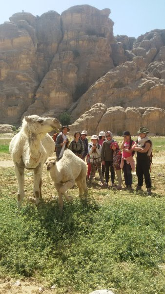 Sleeping under the stars in the moutains of Petra or cave, holiday rental in Petra - Wadi Musa