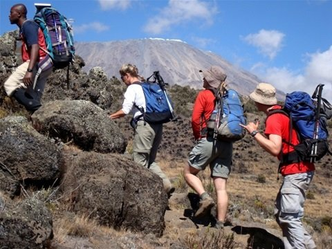 Africa natural tours and Safari- Day Tours, vacation rental in Kilimanjaro Region