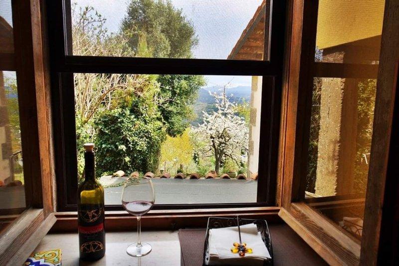 Casa Rose & Rosmarino, holiday rental in Santa Fiora