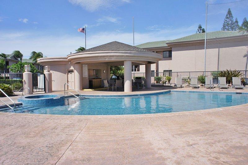 Complexe piscine et aire de barbecue