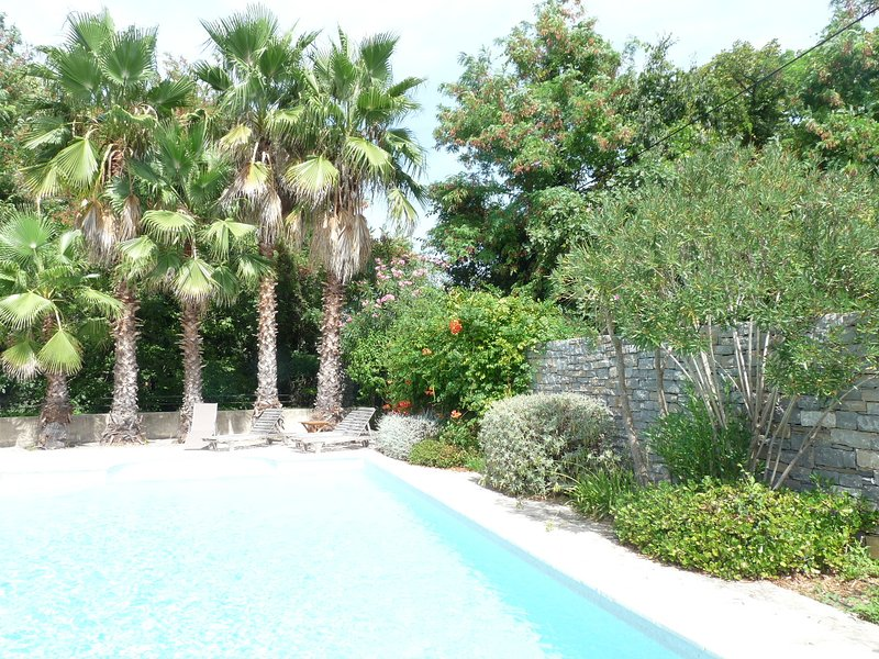 Restored country house with pool. Ideally suited to more than one family, casa vacanza a Montpeyroux