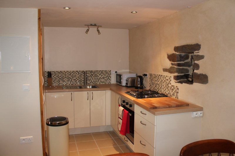 Well equipped kitchen with oven, gas hob, fridge-freezer and microwave