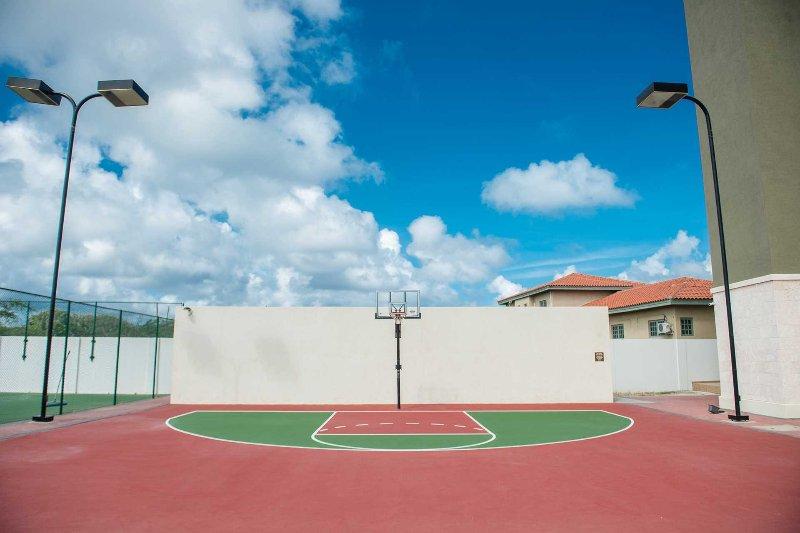 Raquettes de tennis, balles de tennis et basketball disponibles sur demande