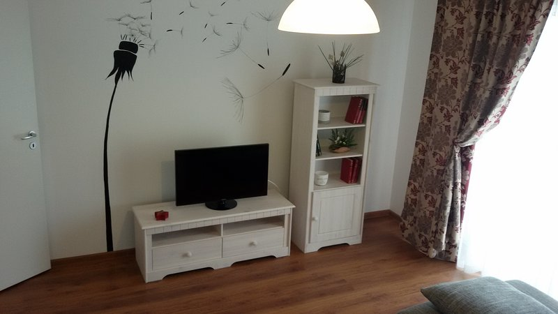 BD APARTMENTS, holiday rental in Selimbar