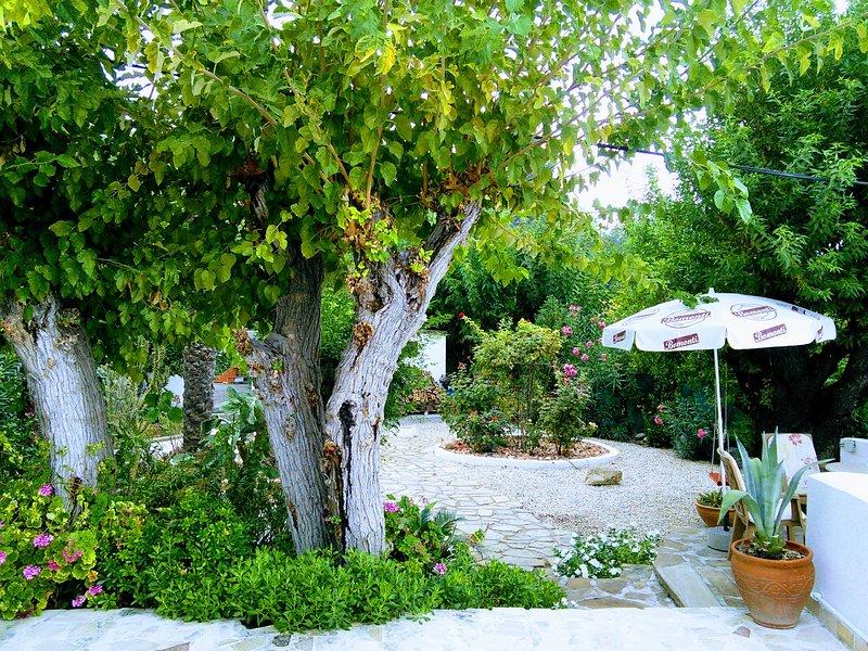 Picturesque garden Area