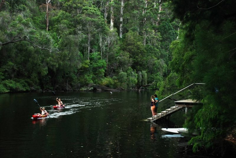 National Park Forest - Camp one step from nature, holiday rental in Pemberton