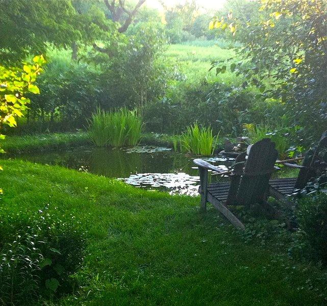 El pequeño estanque koi