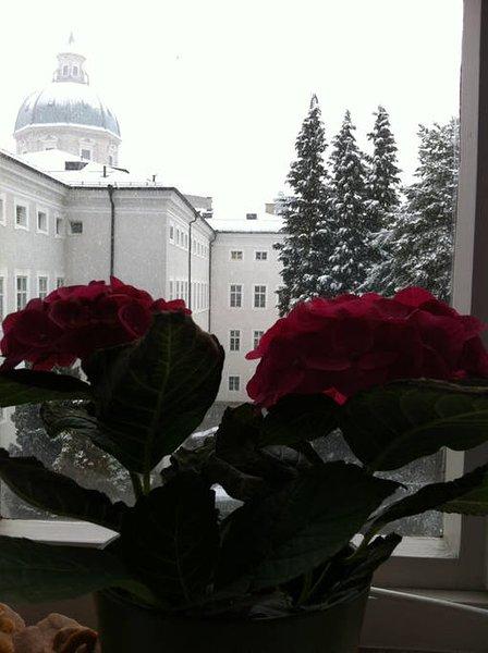 Winter Blick vom Wohnzimmer