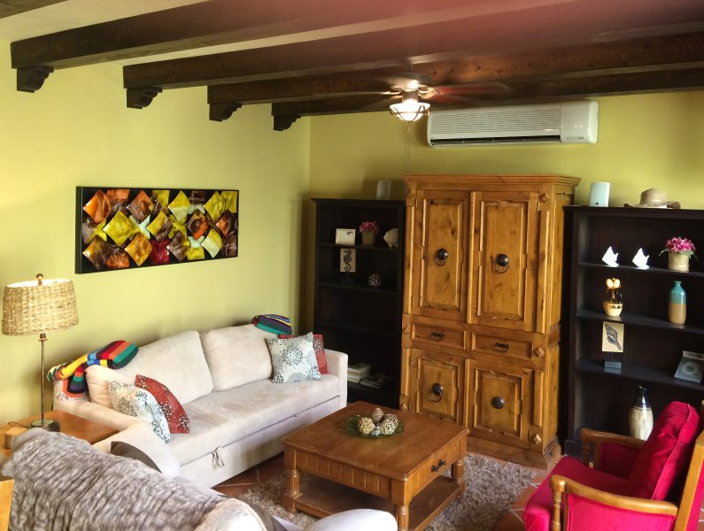 Living room features a full size couch that opens into a comfortable double bed, and a Smart TV