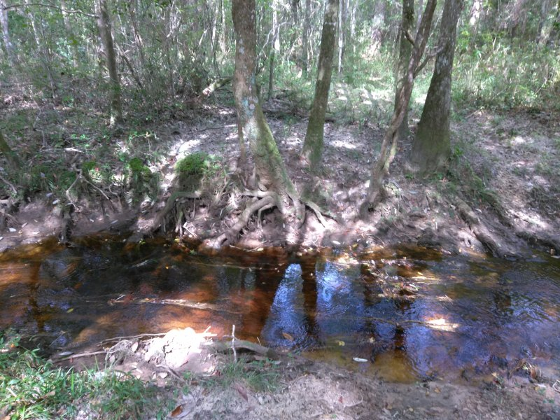 Glamping on the Creek