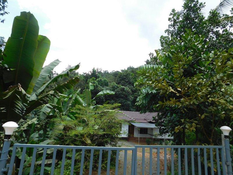 Paithal Homestay, holiday rental in Taliparamba
