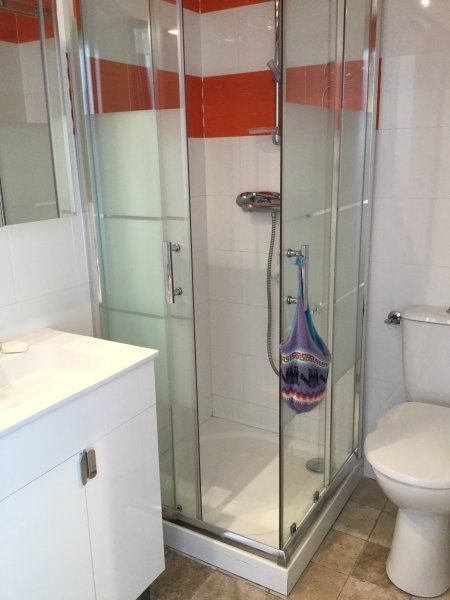 La location bénéficie d'une douche, d'un WC et d'une vasque