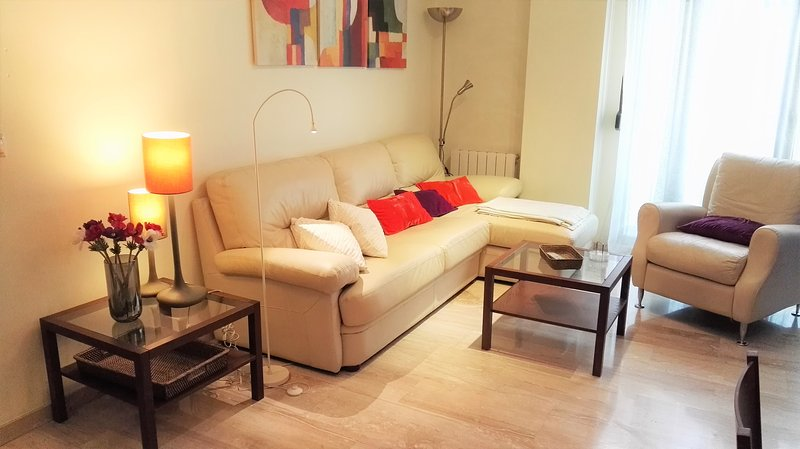 Cute apartment in the center, parking, wifi, holiday rental in Armilla