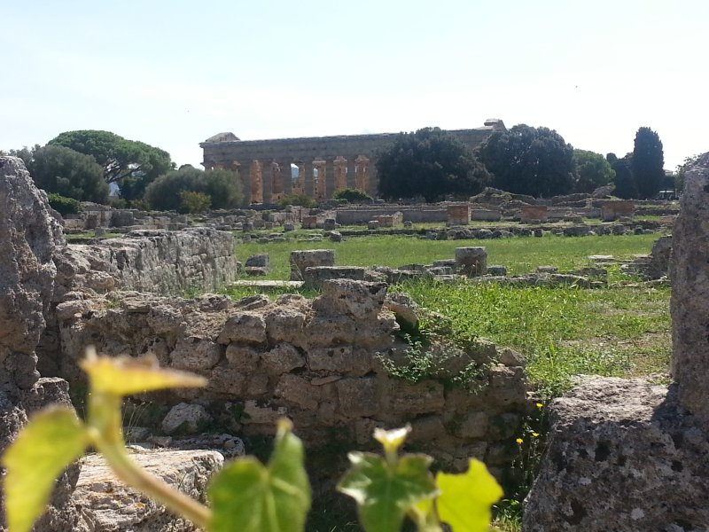 Paestum Templo de Netuno