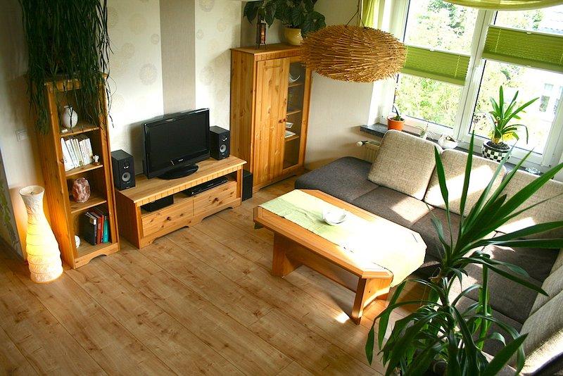 Living room - sofa, TV, DVD player, music system