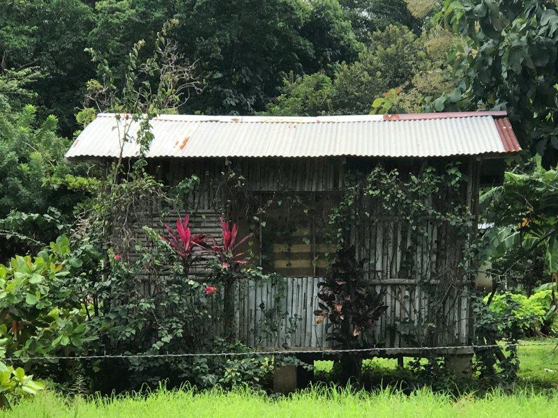 encanto de Costa Rica