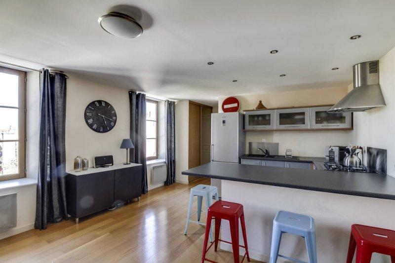 Appartement au coeur du quartier des antiquaires, holiday rental in Saint-Apollinaire
