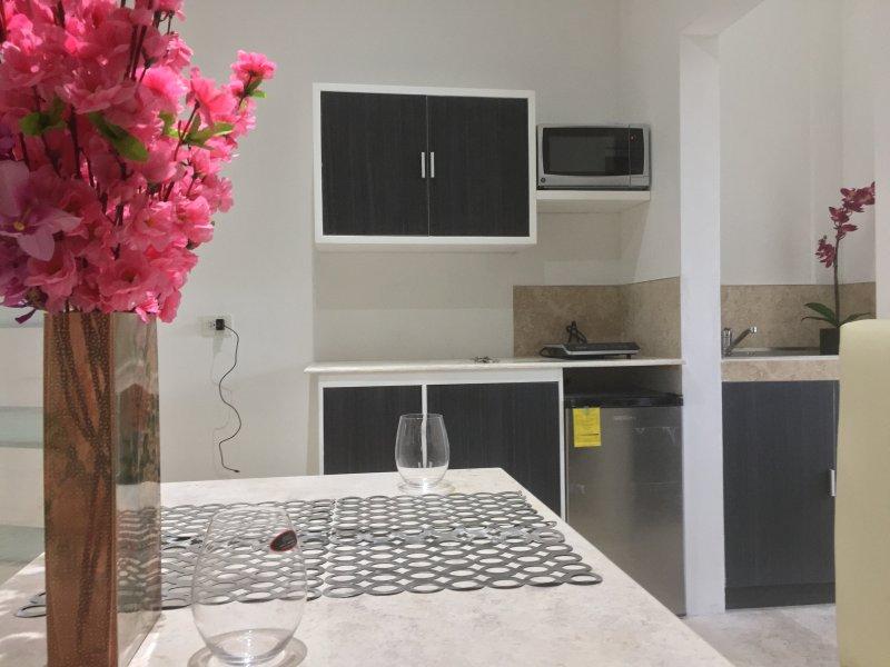 Precioso Departamento A Minutos De La Buap Y Angelopolis, 20 mins del Centro, holiday rental in San Pedro Cholula