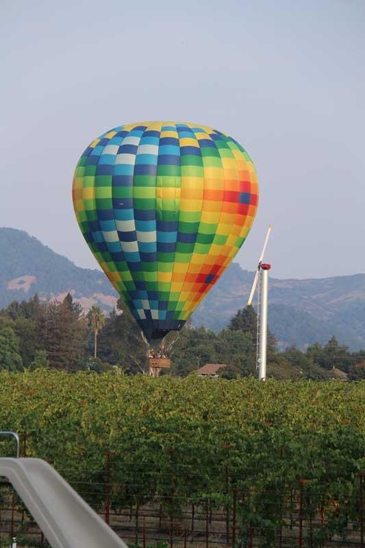 Backyard - balloons seen almost daily