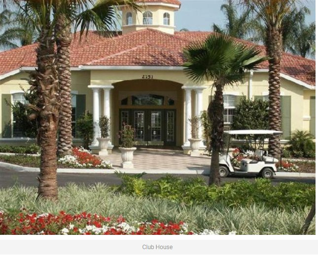Roof, Building, Deck, Porch, Palm Tree